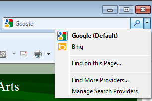 IE Search Bar